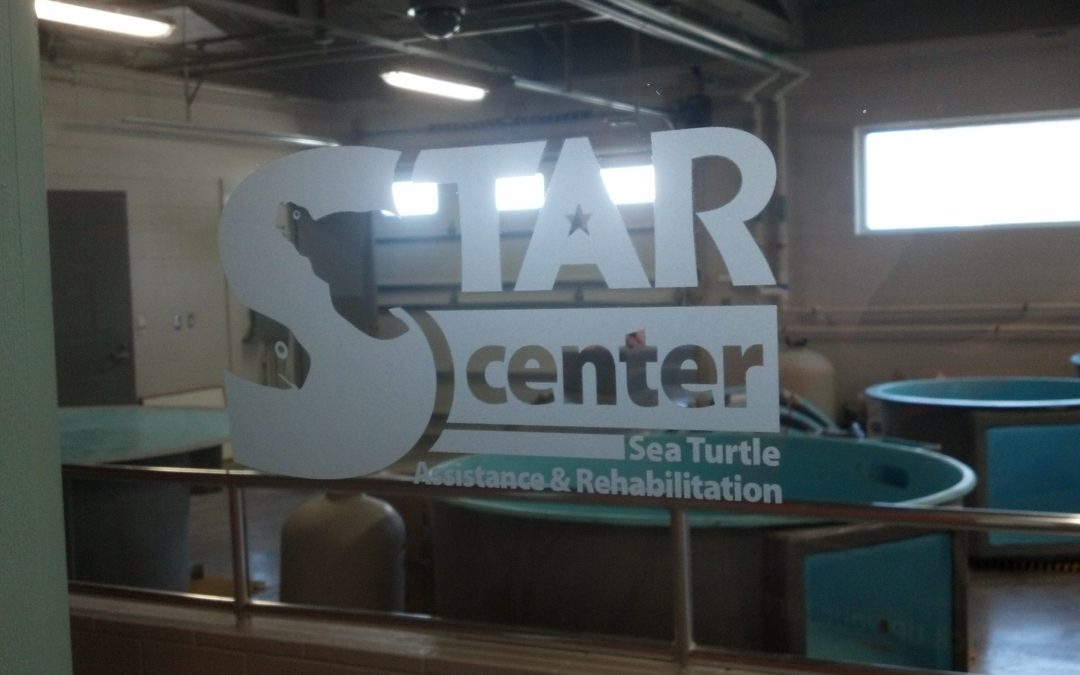 STAR Center opens its doors