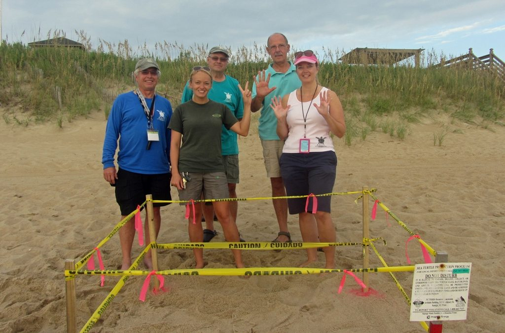 Nest #17 Discovered in Nags Head!