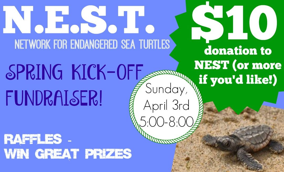 Save the Date!! N.E.S.T. Sea Turtle Fundraiser Set for April 3