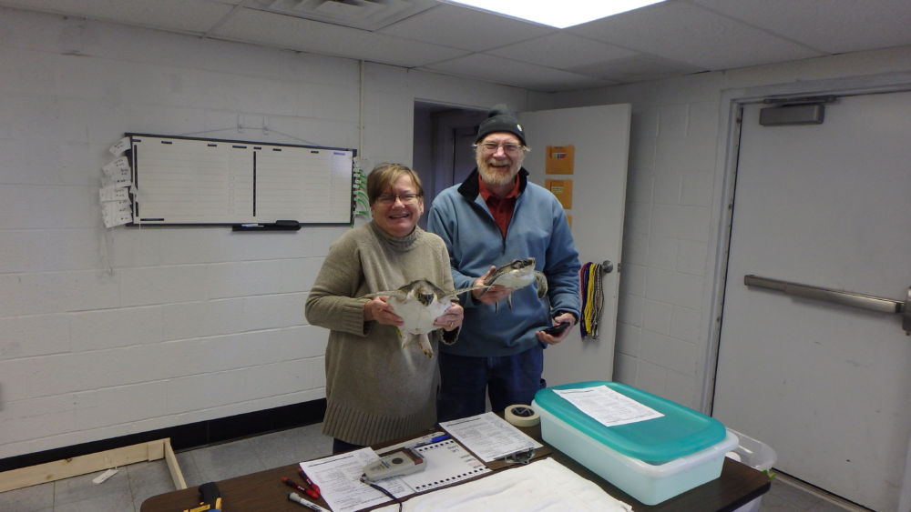 Amy and Frank begin intake process