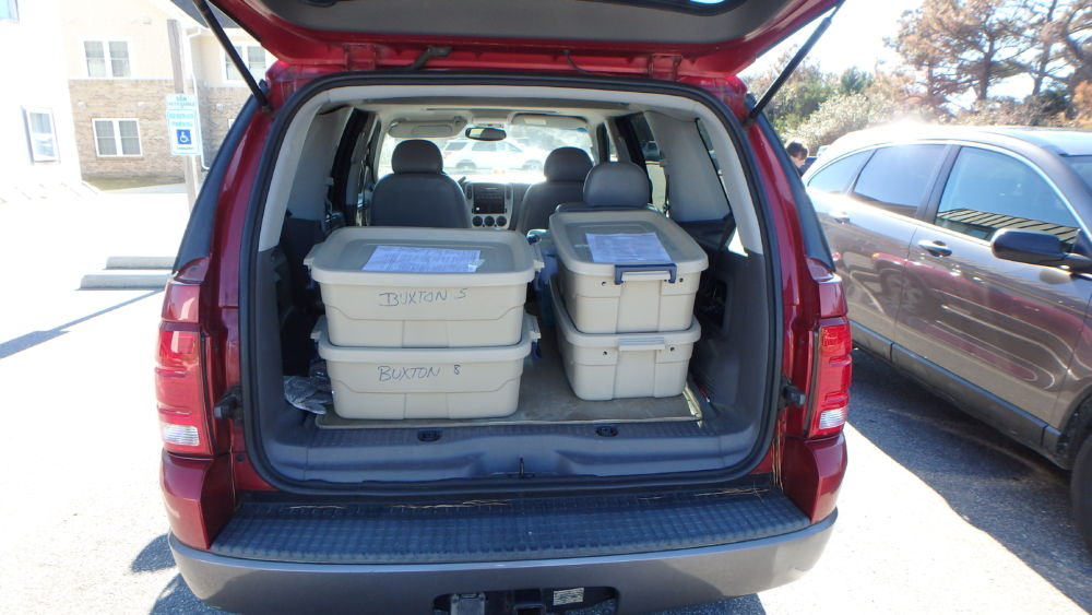 Cold stun sea turtles ready for transport to the S.T.A.R. center.