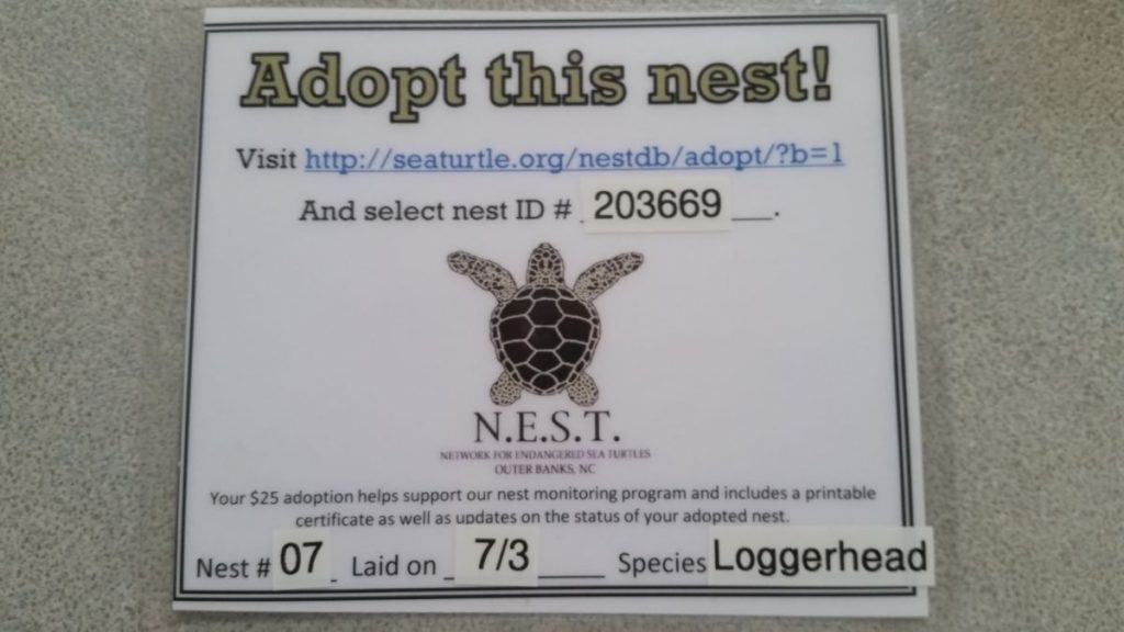 A Adopt-A-Nest sign which contains the Seaturtle.org ID #, the NEST nest #, Date laid and the Species of the sea turtle.
