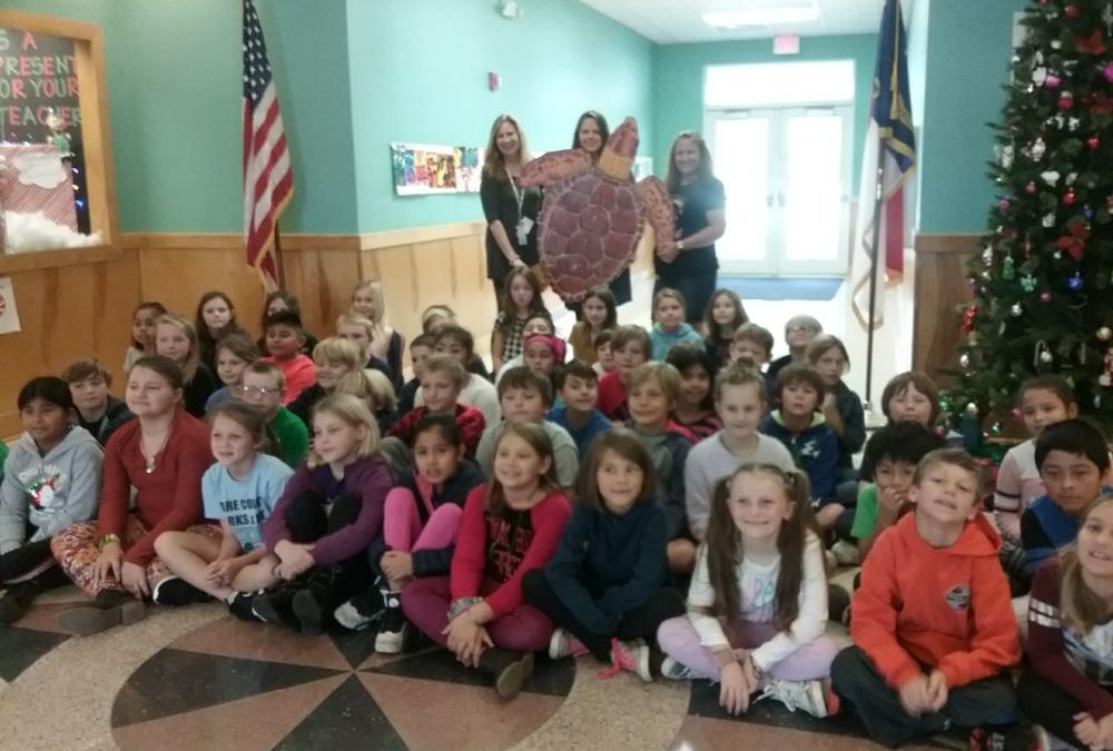 Cape Hatteras Elementary School Third Graders Learn about Sea Turtles