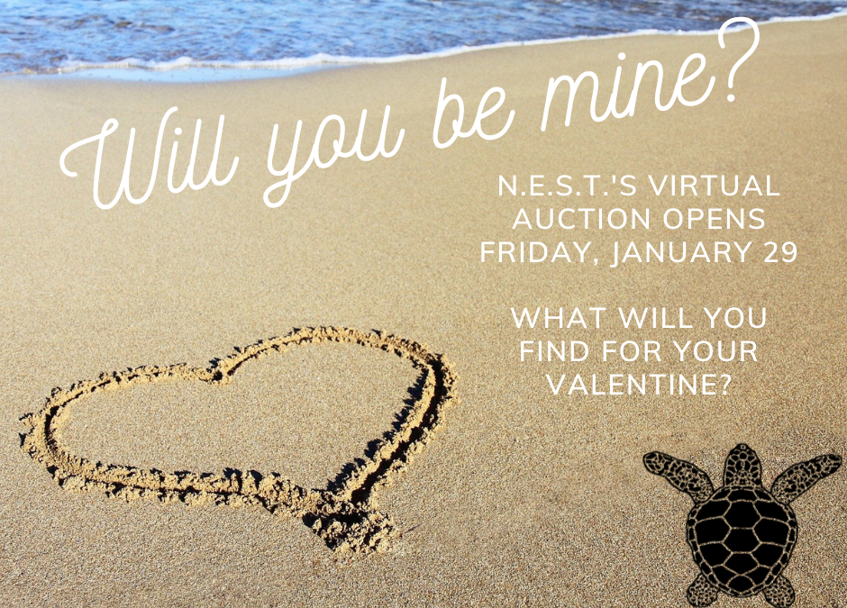 N.E.S.T.'s Fun Fabulous Virtual Valentine's Day Auction Opens Friday January 29th!